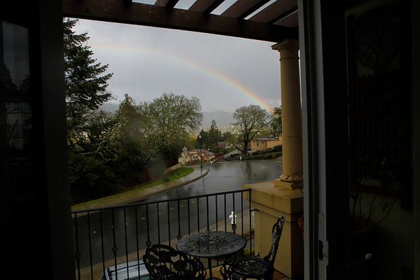 Lenny, rainbow, bird, Desi, Grandpa