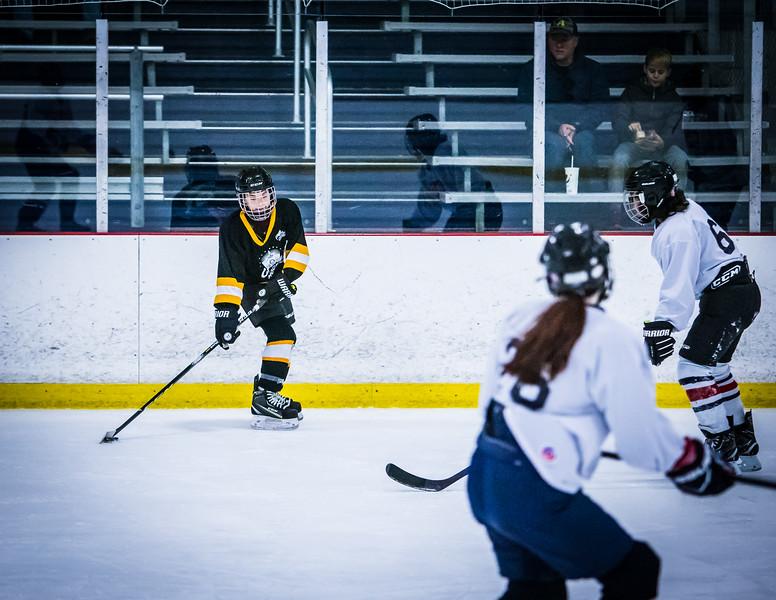 Bruins2-339.jpg