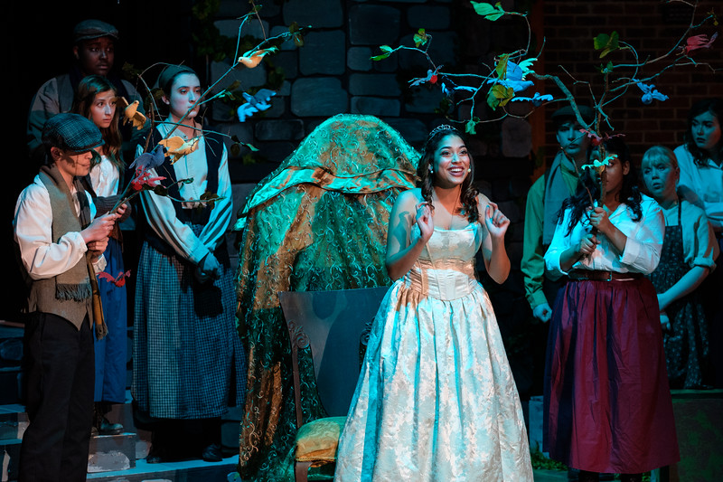 2018-03 Into the Woods Performance 0667.jpg