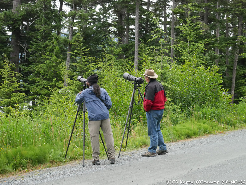 Photographers in the wild