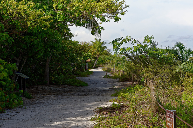 Gulf Front Walkway To Sanibel Lighthouse