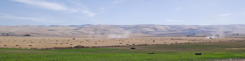 Cabbage Hill, OR Hay Season