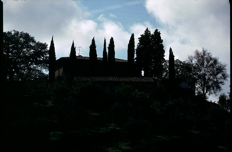 ItalyNapa1_048.jpg