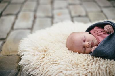Everly's Newborn Session