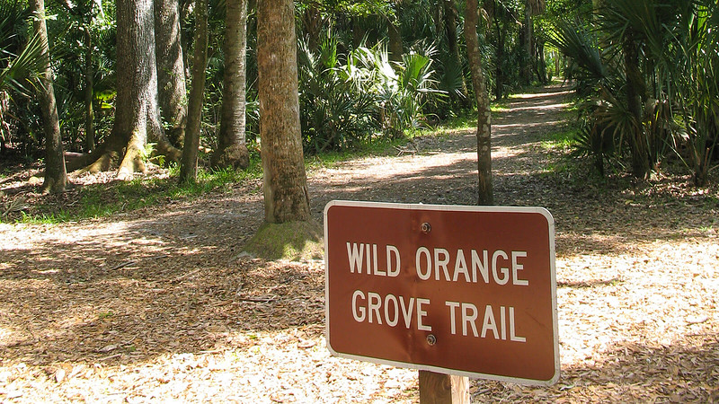 Trailhead sign and trail behind it