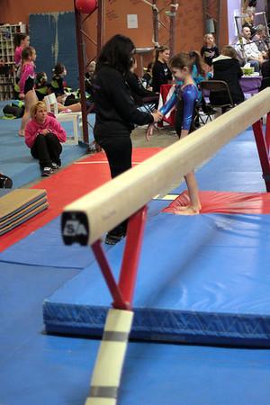 2014 Polar Bear Meet : Session 2 : Falcon Gymnastics