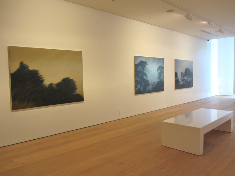 2012 New Paintings, Tim Olsen Gallery, Sydney