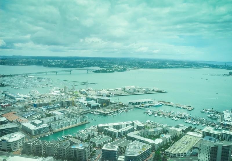 Auckland-10.jpg