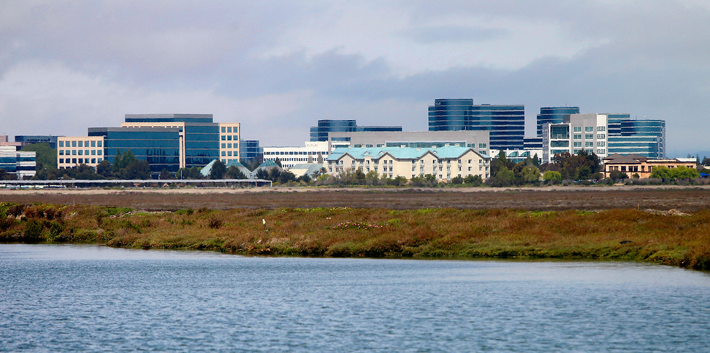 . Smith Slough runs along middle Bair Island as Oracle\'s headquarters tower over the the shoreline on Tuesday, April, 17, 2012, in Redwood City, Calif. (Aric Crabb/Bay Area News Group Archives)