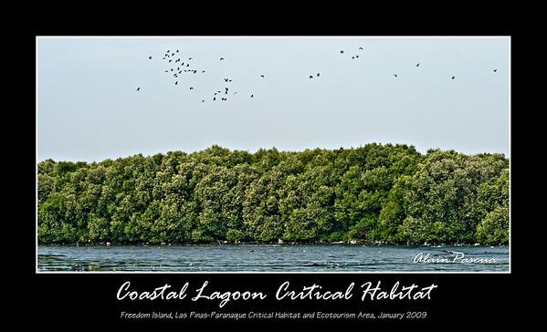 Coastal Lagoon Critical Habitat