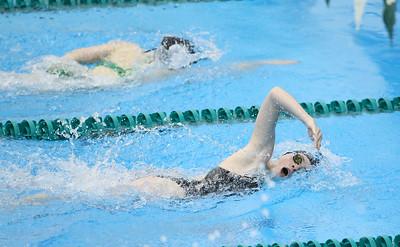 2015 Div 1 sectional swim meet