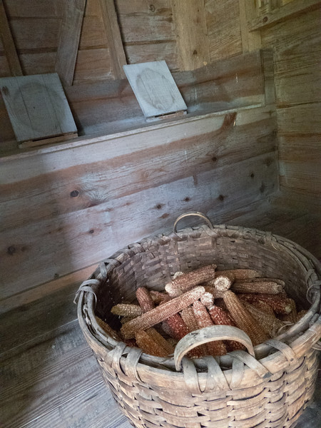 Privy at Liberty Hall plantation. Kenansville, NC.