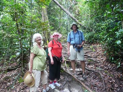 2008 Borneo