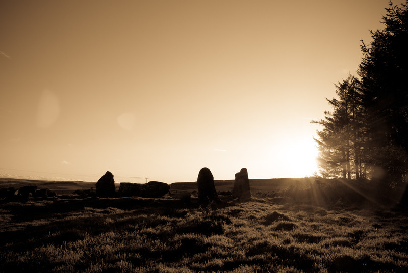 """[Week 1: 1st-7th Jan]  The Aikey Brae stone circle (57° 30' 50.87"""" N 2° 4' 6.4"""" W). We all went for a nice walk there before a late lunch. It was a fun day."""