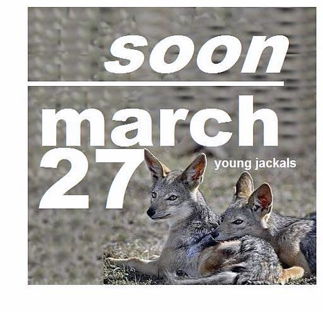 27 MARCH (soon)