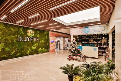 Projekt 2017 Blumental