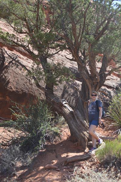 Arizona2014-Sedona - 56.jpg