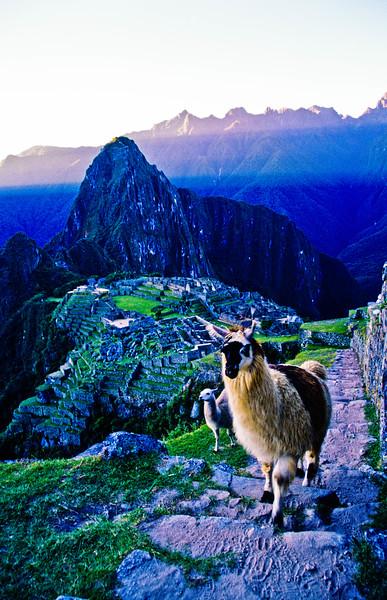 Peru-140.jpg