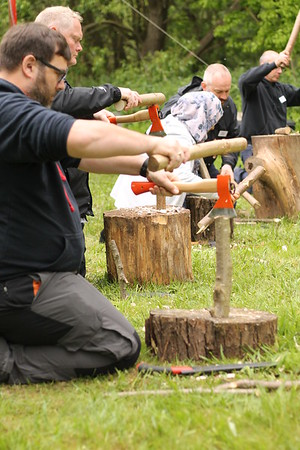 Practical Skills Day  (May 2017)