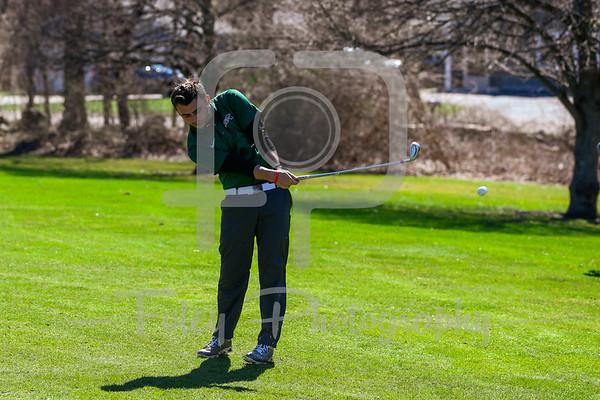Nichols Golf