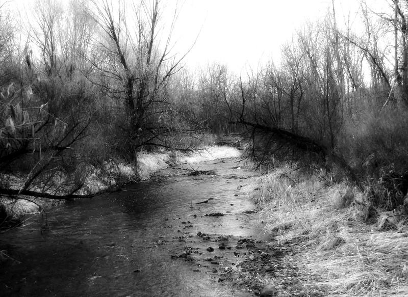 amh PARKS & WATER (419).jpg