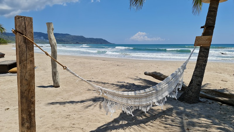 Hammock on a white sand beach with palm trees