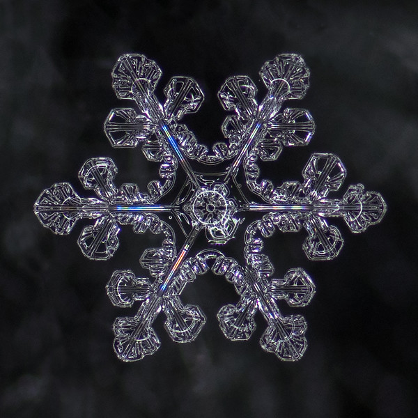 Snowflake Refracted Light