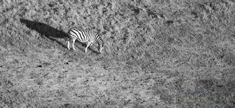 Botswana-20110719-10417-Edit.jpg