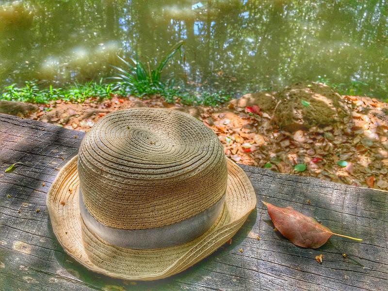 The Hat_8.jpeg