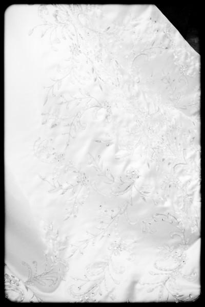 20111008-36114.jpg