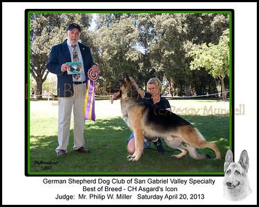 German Shepherd Dog Club Of San Gabriel Valley - April 2013 AM Show