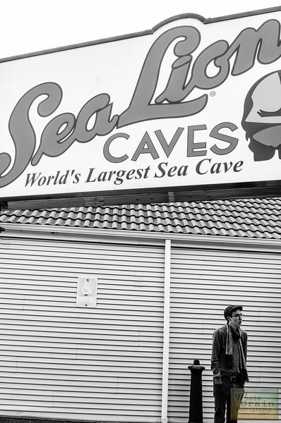 20141014_SeaLionCaves_0001.jpg