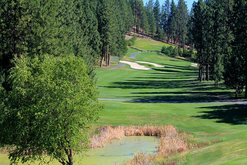 #12 Fairway, The Creek at Qualchan GC,  Spokane, Wa