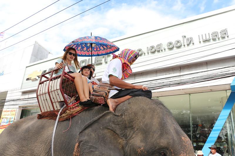 2014-11-14 Surin Elephant Welcome Feast 401.JPG