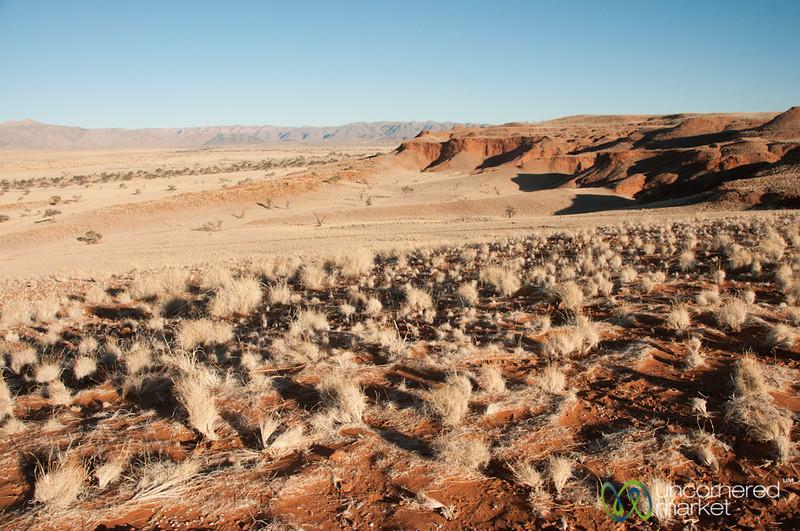 Petrified Dunes in the Namib Desert - Namibia