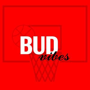 Budweiser | BUD VIBES