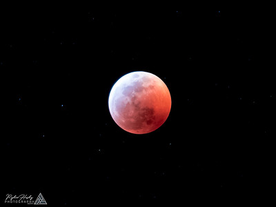 Super Blood Wolf Moon - 01-20-2019