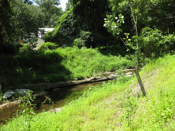 Rock Creek Watershed Restoration <br/>  Montgomery County, MD