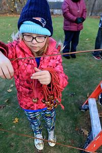 Girls Scout Vigil, November 10, 2018