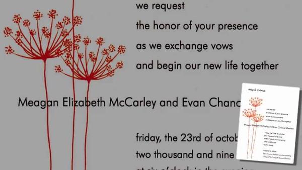 Meg and Chance Wedding.mp4