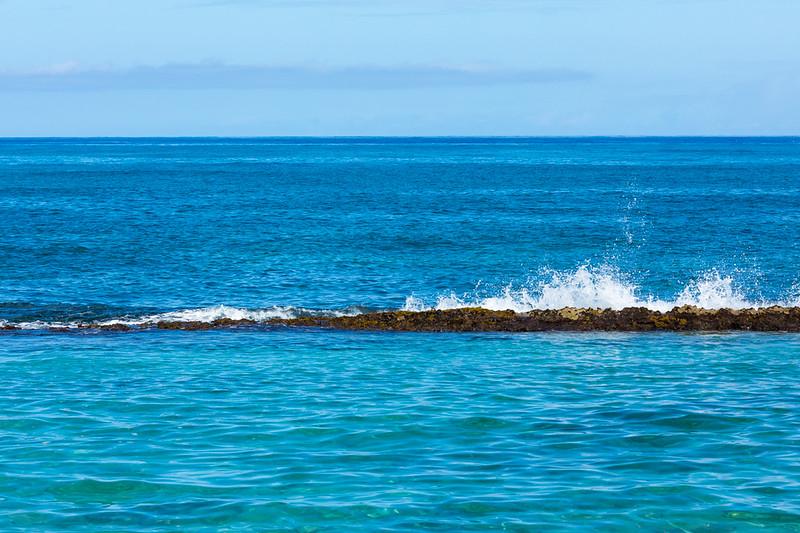 Travel_Hawaii_03032020_0068.jpg