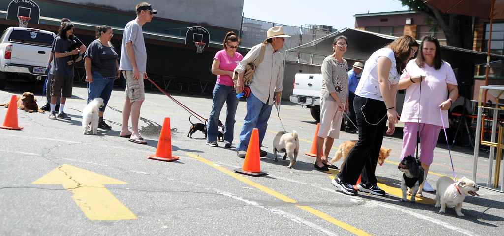 . Dozens wait with their pets during the traditional Blessing of the Animals at St Andrew Church School on Saturday, March 30, 2013 in Pasadena, Calif.  (Keith Birmingham Pasadena Star-News)