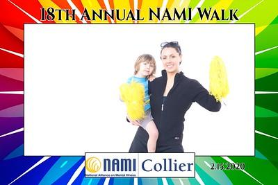 NAMI Walk 2020