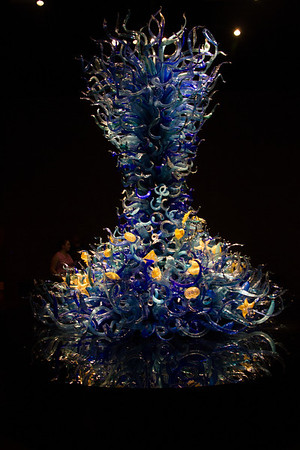 Chihuli Museum and Gardens