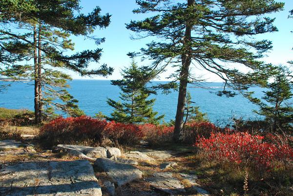 Schoodic Seascapes-Acadia Nat'l Park