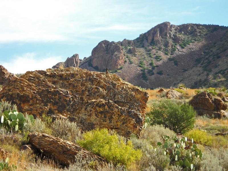 Backlit rocks squirrel to peak.jpg
