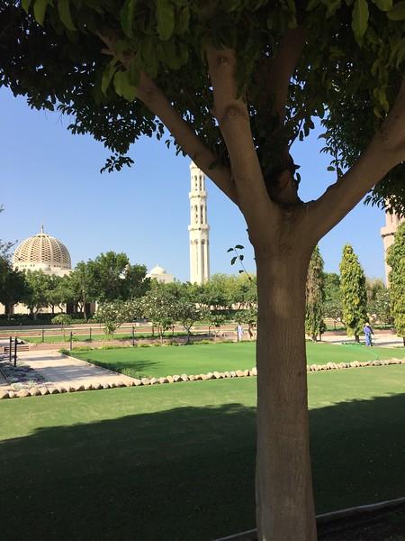 Sultan Qaboos Grand Mosque in Muscat, Oman - Bridget St. Clair