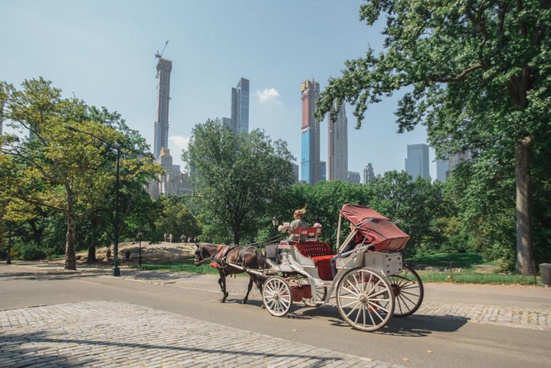 Central Park Elopement - Emma & Kevin-8.jpg
