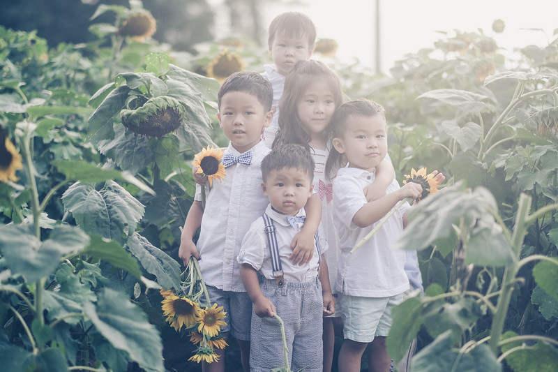2019_07_14 Sunflower Farm-8211.jpg