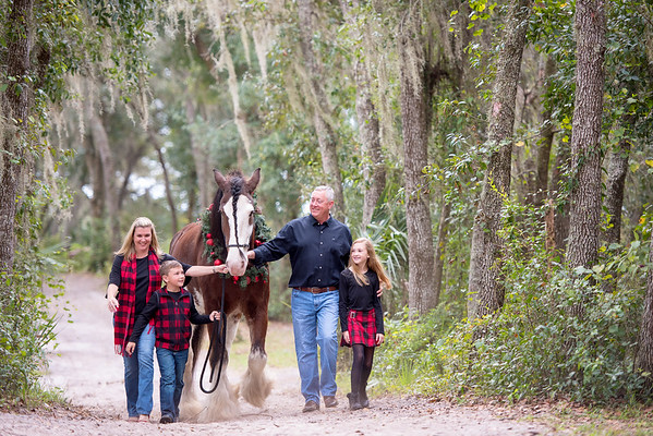 Clydesdales Nov 2019 - Hess